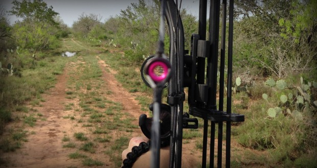 Clearshot 2Tone PEEP sight picture
