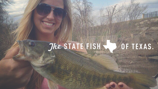 The State Fish of Texas