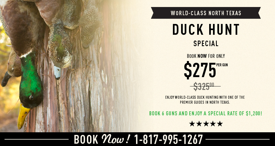 WORLD-CLASS NORTH TX DUCK HUNT